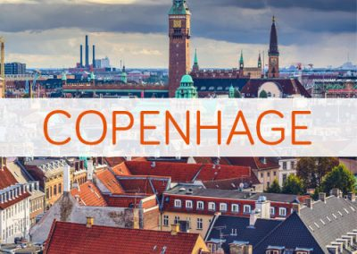 Oferta para viajar a Copenhage, con The Pet Travel Club